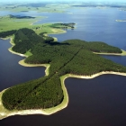 Bosques del Río Negro
