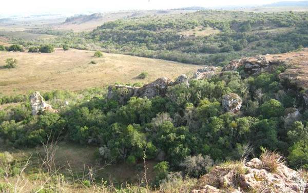 Gruta de los Cuervos en Tacuarembó