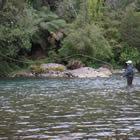 La pesca de agua dulce en Uruguay