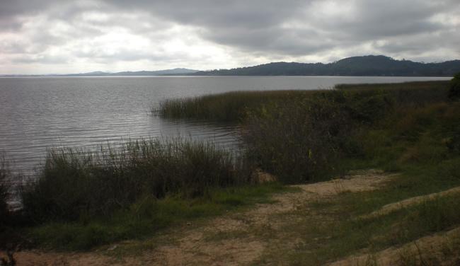 Laguna del Sauce
