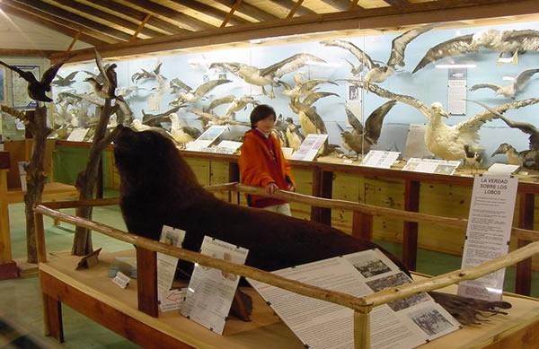 Museo del Mar en Punta del Este