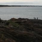 Punta de la Ballena