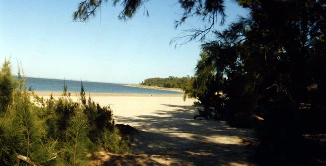 Turismo en el río Negro - San Gregorio de Polanco