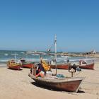 Turismo ético, otro motivo para viajar a Uruguay