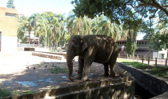 Zoológico de Villa Dolores